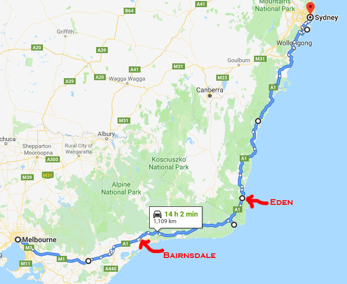 How To Get from Melbourne to Sydney 2019 [with photos